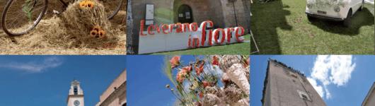 Leverano in Fiore is back for FoPD 2019!