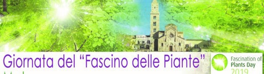 Fascination of Plants Day in Matera