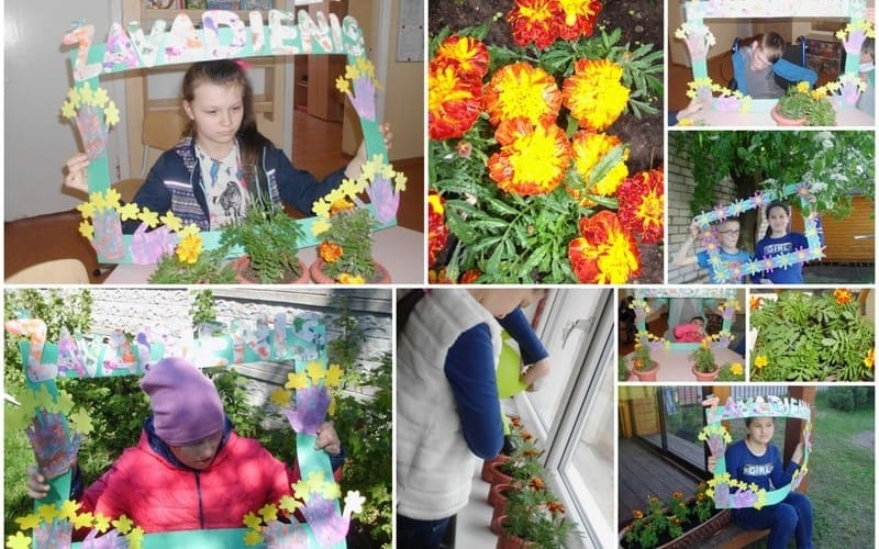 Discover the exhibition of Kelmė district Šedbarai Primary School-Multifunctional Center, Lithuania